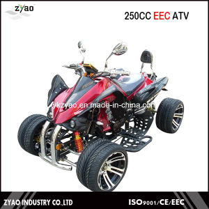 Kawasaki 250cc EEC Quad/ Racing ATV with 14inch Alloy Wheel Water Cooled Engine pictures & photos