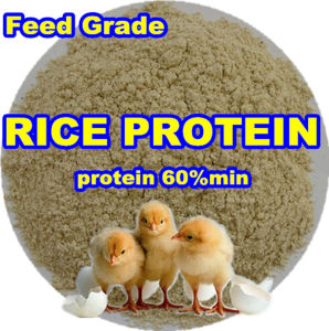Non-Gmo Rice Protein Meal (protein 60) pictures & photos