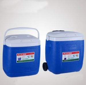 China Wholesale Trolley Cooler Bag pictures & photos