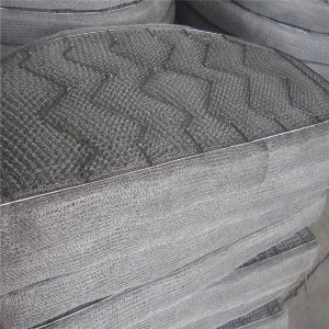 Ss 316 Stainless Steel Wire Mesh Demister Pad pictures & photos