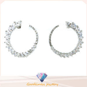 Good Quality Fashion Jewelry Woman Earring (E6455) pictures & photos