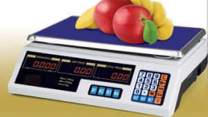 Electronic Digital Weighing Computing Price Scale (DH~209A) pictures & photos