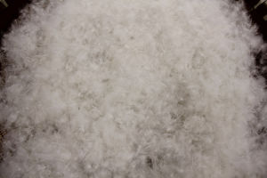 USA Standard 50% White Duck Down pictures & photos