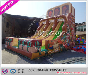 2016 New Shark Design Customize Grey Color Inflatable Slide Inflatable Kids Slide (Lilytoys-New-003) pictures & photos