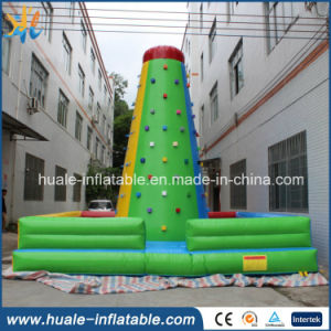 Customized Inflatable Bouncer, Inflatable Climbing Wall pictures & photos