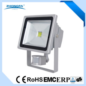 Ce RoHS EMC Approved 2400lm 30W Projection Light pictures & photos