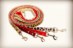 Cheap Dog Lead, Bulk Promotion Pet Products pictures & photos