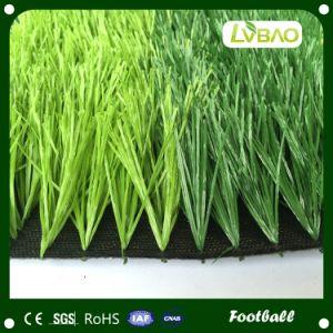 Cheap Price Outdoor Football Field Artificial Grass pictures & photos