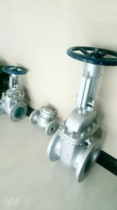 Russia Gate Valve pictures & photos