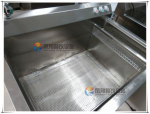 Wasc-10 Ce Approve Commercial Vegetable Washing Disinfecting Machine pictures & photos
