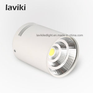 Surface Mounted LED COB Downlight with 10W - 30W pictures & photos