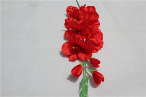 Plastic Fake Orchid Flower Real Touch Artificial Flower Orchids pictures & photos