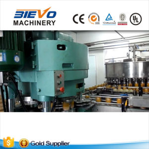 Fruit Juice Can Sealing Equipment for American Customer