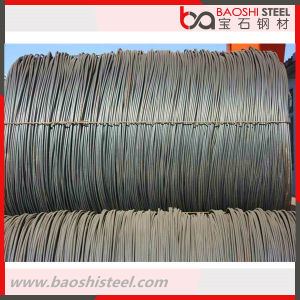 5.5mm Steel Wire Rod in Coils pictures & photos