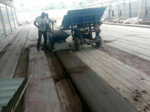 Efficiently Precast Concrete Lightweight Wall Panel Machine pictures & photos
