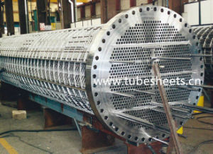 SUS304/304/316/316L Stainless Steel Plate/Baffle/Tubesheet, Manufacturer pictures & photos
