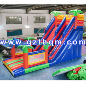 Commercial Grade Inflatable Water Slides/Fashion Customized Inflatable Slide for Children pictures & photos