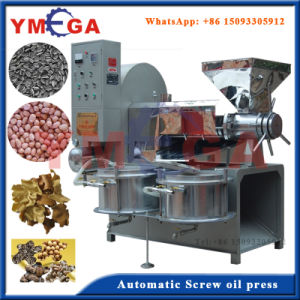 Automatic Screw Type Oil Processing Moringa Seed Oil Press pictures & photos