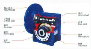 Special Grease Lubricating Gear Box Reducer, Worm Gear, Open Gear in Low Temperature pictures & photos