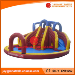 China Inflatable Water Slide Manufacturer/PVC Water Bouncer Slide (T11-309) pictures & photos