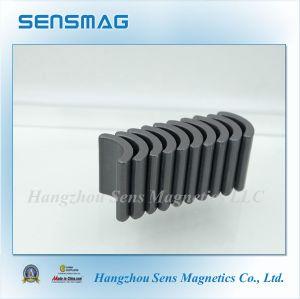 C5~C8 Permanent Ferrite Magnet for Motor pictures & photos