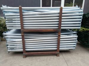 Adjustable Steel Scaffolding Prop pictures & photos