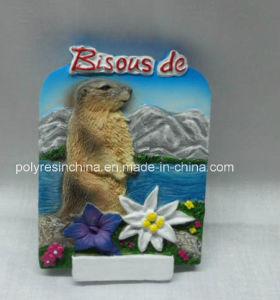 Resin Italy Souvenir Fridge Magnet pictures & photos
