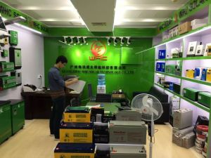 5000W DC to AC Intelligent High-Power Inverter pictures & photos