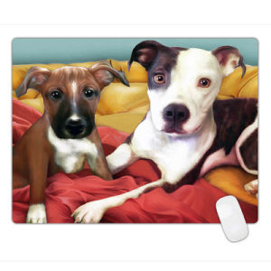Animal Style Anti-Slip Mouse Pad Large Pad Mat Mousepad 600*450*3mm pictures & photos