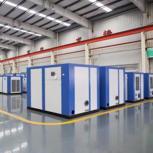 Industrial Electric Motor Direct Belt Driven Double Screw Air Compressor pictures & photos