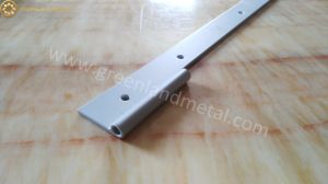 Aluminium Hinge Profile for The Door pictures & photos