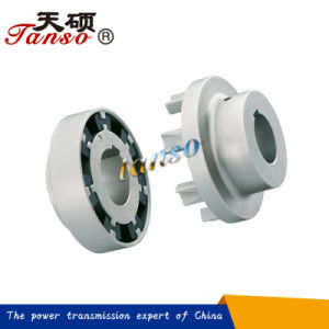 H Spider Jaw Coupling Made in China pictures & photos