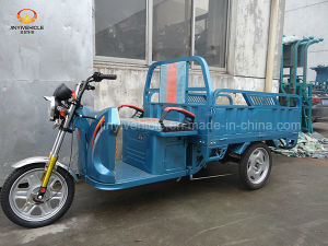 48V 20A 650W Electric Tricycle for Cargo Shipping pictures & photos