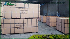 Export Normal Packment for 18mm Film Faced Plywood pictures & photos