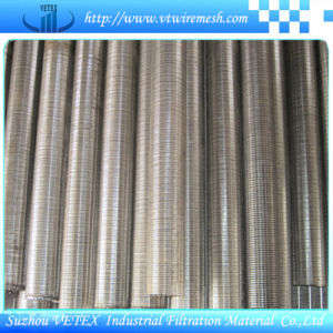 Stainless Steel Mine Sieving / Screen Mesh for Arts pictures & photos