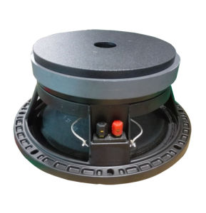 10 Inch PRO Audio Midrange Component Speaker Unit pictures & photos