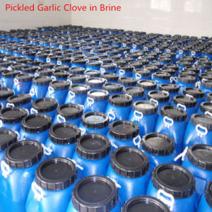 Top Quality Garlic in Brine 50kg Per Drum, All Sizes Are Available pictures & photos