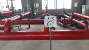 Double Screw Pump with SGS Certificate pictures & photos