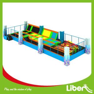 En Standard Large Indoor Bounce Trampoline Park Builder pictures & photos