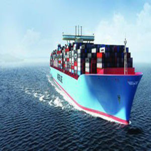 Biggest Professional Shipping Service to East Asia pictures & photos