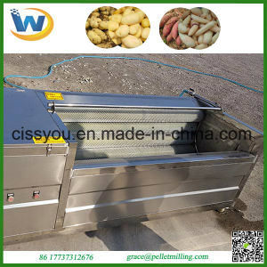 Stainless Steel Brush Vegetable Fruit Washing and Peeling Machine pictures & photos