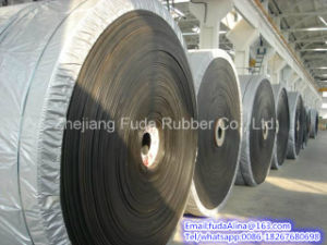 Heat Resistant Conveyor Belt pictures & photos