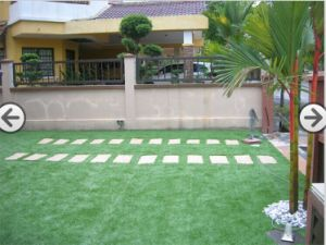 Artificial Grass, Synthetic Grass, Synthetic Turf, Garden Grass (L30-C) pictures & photos