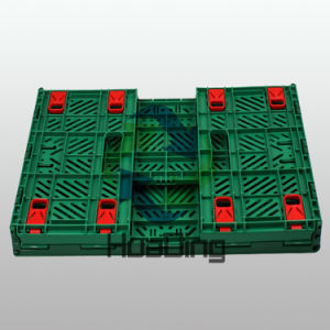 Big Folding Box for Fruits and Vegetables pictures & photos