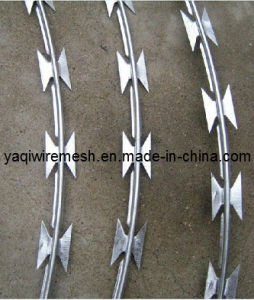 High Quality Bto -22 Razor Barbed Wire pictures & photos