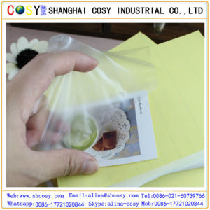 Popular PVC Cold Lamination Film pictures & photos