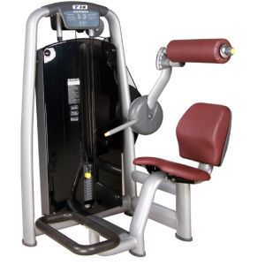 Impulse Back Extension/ Hot Sale Gym Machines/ Commercial Luxury for Gyms pictures & photos