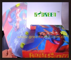 2013 Hot Sale Packaging/ Plastic School Bag (W-14)