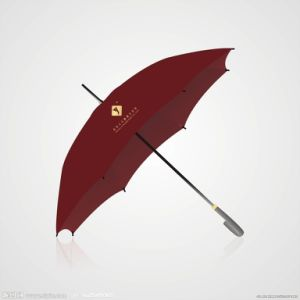 Advertising Umbrella (BD-28) pictures & photos