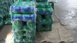 Nylon Monofilament Line Fishing Net pictures & photos